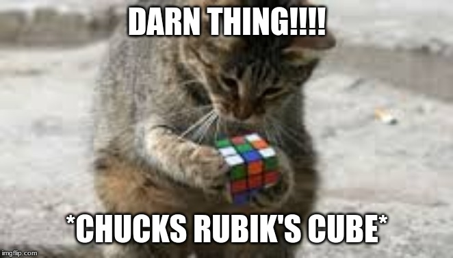 Cat Rubiks Cube | DARN THING!!!! *CHUCKS RUBIK'S CUBE* | image tagged in cat rubiks cube | made w/ Imgflip meme maker