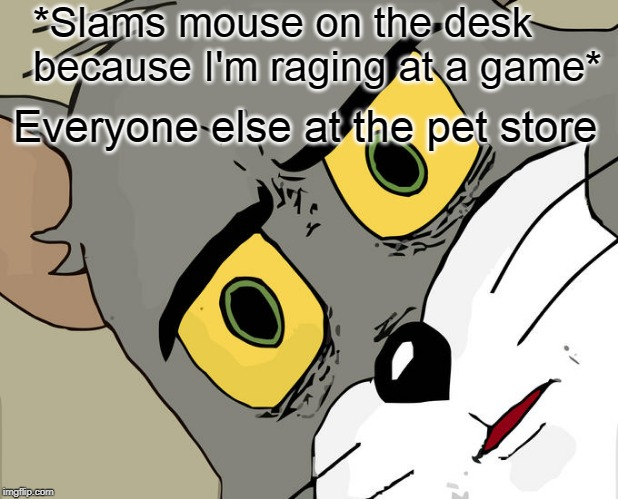 Unsettled Tom | *Slams mouse on the desk because I'm raging at a game* Everyone else at the pet store | image tagged in meme,memes,unsettled tom,pc gaming,gaming,funny meme | made w/ Imgflip meme maker