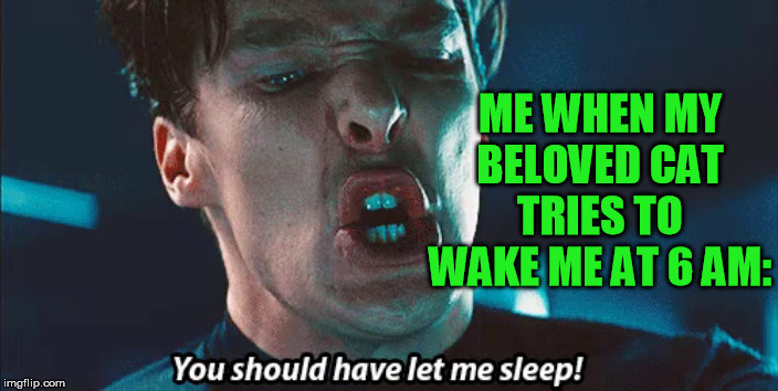 In reality I'm much nicer, but... | ME WHEN MY BELOVED CAT TRIES TO WAKE ME AT 6 AM: | image tagged in cats,khan,star trek | made w/ Imgflip meme maker
