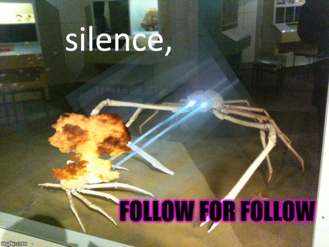 silence |  FOLLOW FOR FOLLOW | image tagged in silence | made w/ Imgflip meme maker