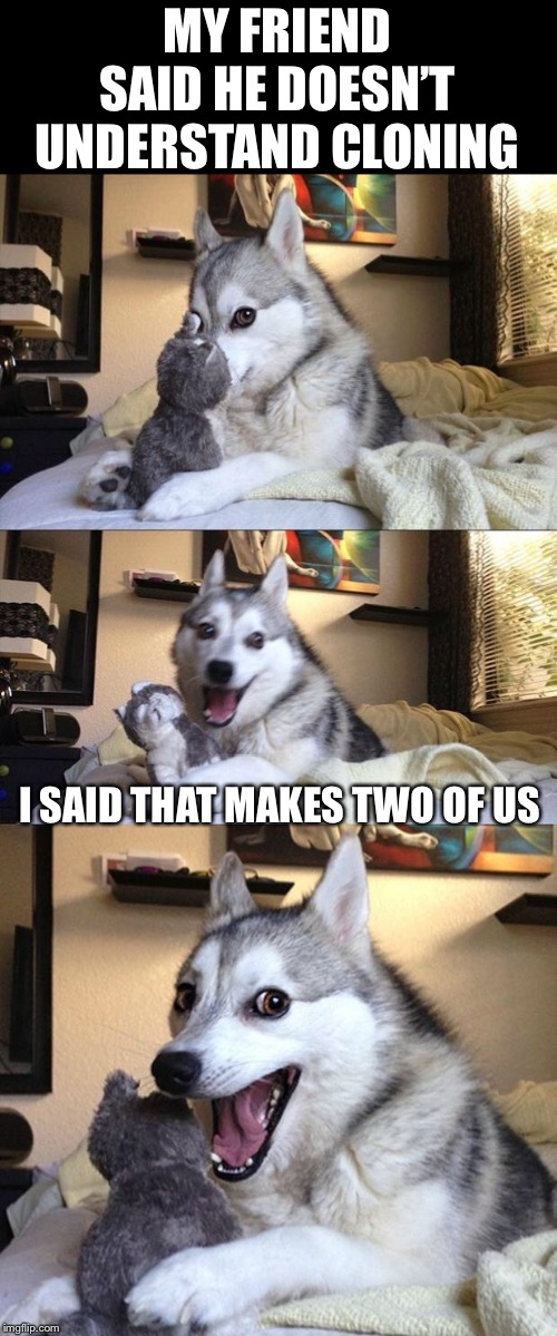 Bad Joke Dog | MY FRIEND SAID HE DOESN'T UNDERSTAND CLONING I SAID THAT MAKES TWO OF US | image tagged in bad joke dog | made w/ Imgflip meme maker