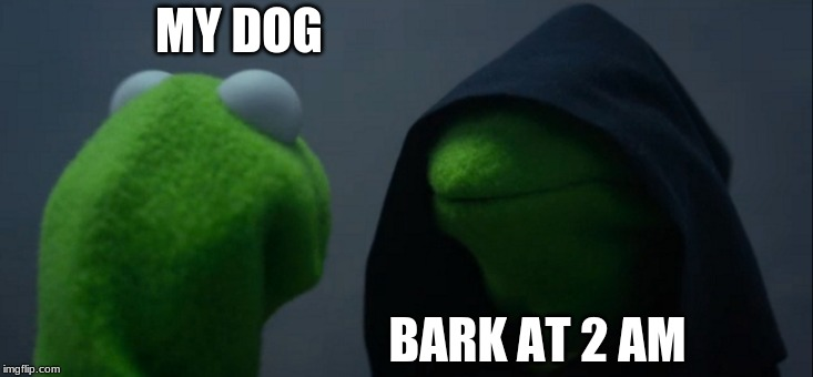 Evil Kermit | MY DOG BARK AT 2 AM | image tagged in memes,evil kermit | made w/ Imgflip meme maker