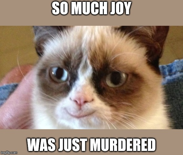 Grumpy Happy Cat | SO MUCH JOY WAS JUST MURDERED | image tagged in grumpy happy cat | made w/ Imgflip meme maker