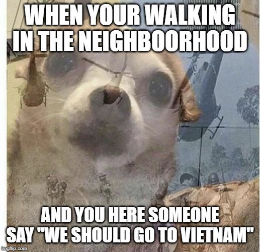 "Oh no, grandpa? Anyone..? | WHEN YOUR WALKING IN THE NEIGHBOORHOOD AND YOU HERE SOMEONE SAY ""WE SHOULD GO TO VIETNAM"" 