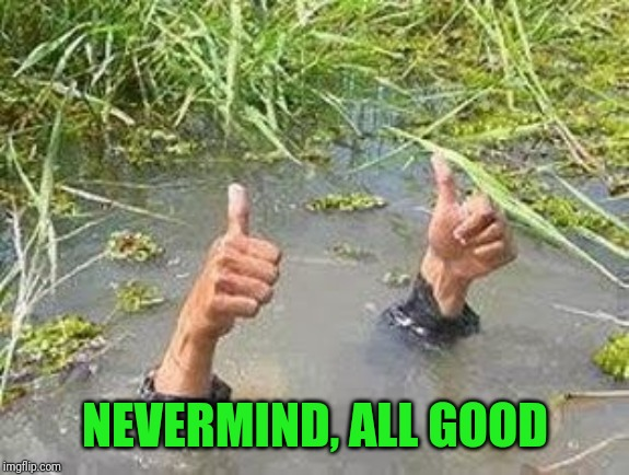 FLOODING THUMBS UP | NEVERMIND, ALL GOOD | image tagged in flooding thumbs up | made w/ Imgflip meme maker