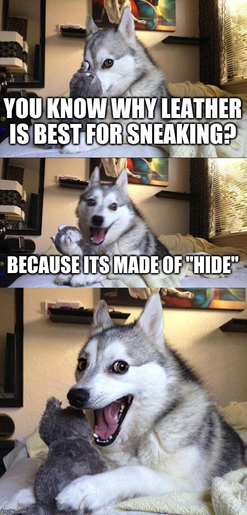 "Bad Pun Dog Meme | YOU KNOW WHY LEATHER IS BEST FOR SNEAKING? BECAUSE ITS MADE OF ""HIDE"" 