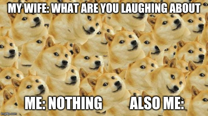 Multi Doge | MY WIFE: WHAT ARE YOU LAUGHING ABOUT ME: NOTHING          ALSO ME: | image tagged in memes,multi doge | made w/ Imgflip meme maker