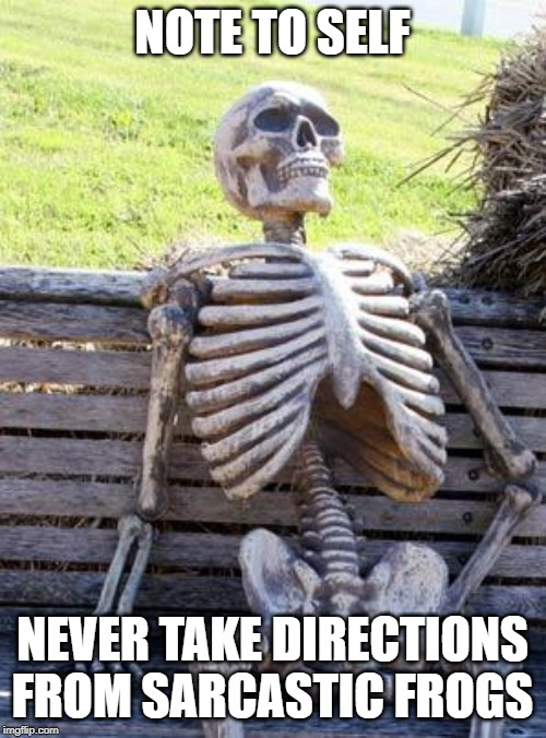 Waiting Skeleton Meme | NOTE TO SELF NEVER TAKE DIRECTIONS FROM SARCASTIC FROGS | image tagged in memes,waiting skeleton | made w/ Imgflip meme maker