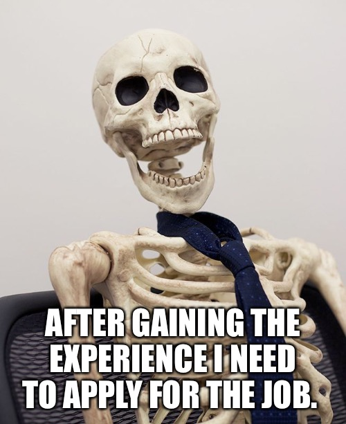 The experience paradox. | AFTER GAINING THE EXPERIENCE I NEED TO APPLY FOR THE JOB. | image tagged in memes,funy memes,october,skeleton,skeleton waiting | made w/ Imgflip meme maker