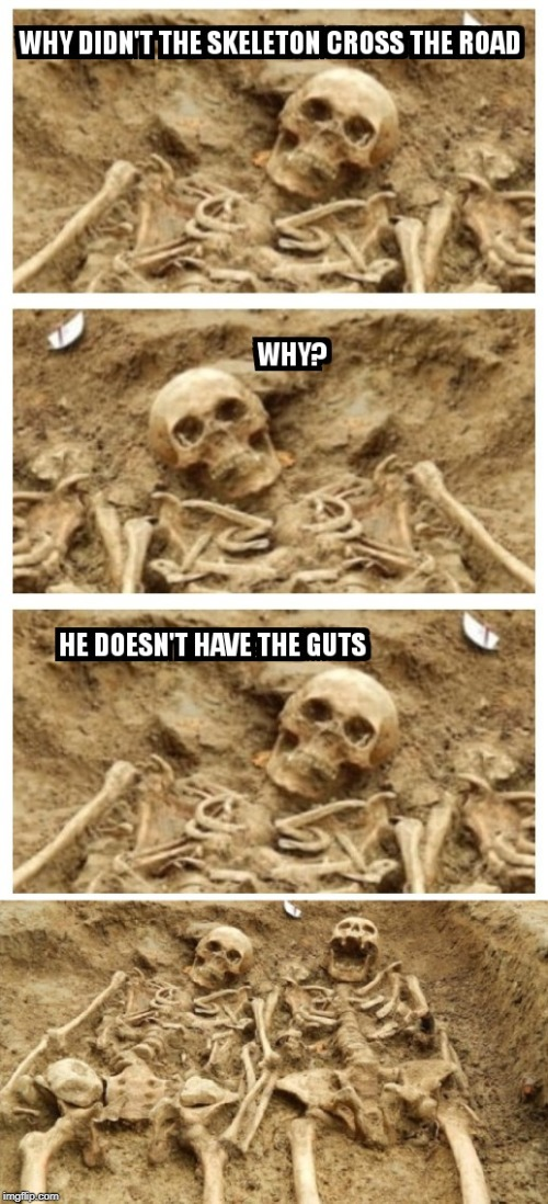 Bad Joke Skeletons | image tagged in skeleton,bad joke | made w/ Imgflip meme maker