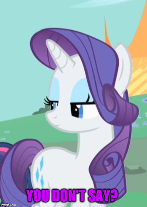 My Little Pony Rarity Sarcastic | YOU DON'T SAY? | image tagged in my little pony rarity sarcastic | made w/ Imgflip meme maker