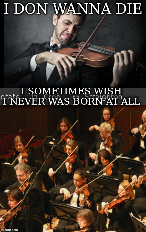 I DON WANNA DIE I SOMETIMES WISH I NEVER WAS BORN AT ALL | image tagged in violin trump supporters | made w/ Imgflip meme maker