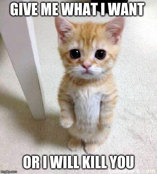Cute Cat |  GIVE ME WHAT I WANT; OR I WILL KILL YOU | image tagged in memes,cute cat | made w/ Imgflip meme maker
