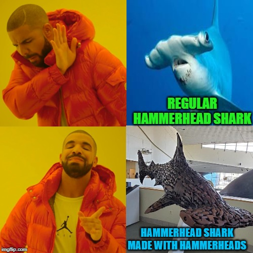That is one cool Hammerhead... | REGULAR HAMMERHEAD SHARK HAMMERHEAD SHARK MADE WITH HAMMERHEADS | image tagged in memes,drake hotline bling,hammerhead shark,funny,art sculpture,sharks | made w/ Imgflip meme maker