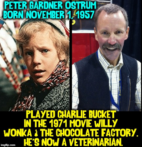 Where Are They Now? | PETER GARDNER OSTRUM BORN: NOVEMBER 1, 1957 PLAYED CHARLIE BUCKET IN THE 1971 MOVIE WILLY WONKA & THE CHOCOLATE FACTORY.   HE'S NOW A VETERI | image tagged in vince vance,peter ostrum,charlie bucket,veterinarian,willy wonka,child stars | made w/ Imgflip meme maker