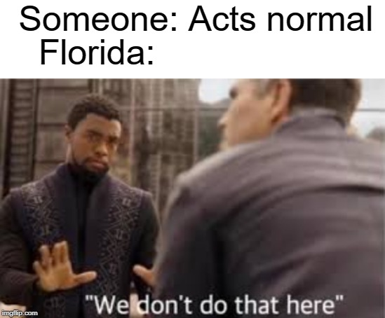 florida man | Someone: Acts normal Florida: | image tagged in blank white template,florida man,funny,we don't do that here,memes | made w/ Imgflip meme maker