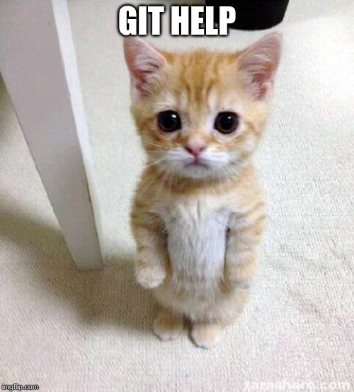 git help |  GIT HELP | image tagged in memes,cute cat | made w/ Imgflip meme maker