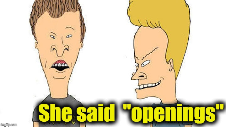"Beavis & Butthead | She said  ""openings"" 