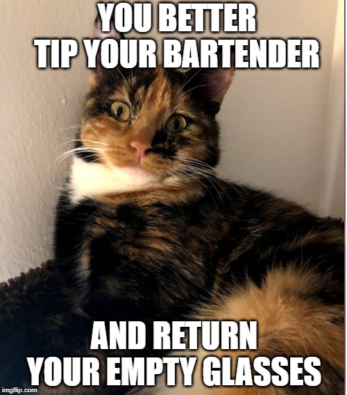 YOU BETTER TIP YOUR BARTENDER AND RETURN YOUR EMPTY GLASSES | image tagged in tip,bartender,bar | made w/ Imgflip meme maker