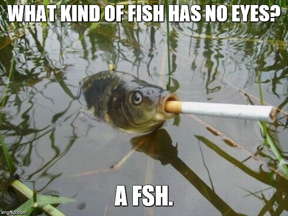 WHAT KIND OF FISH HAS NO EYES? A FSH. | made w/ Imgflip meme maker