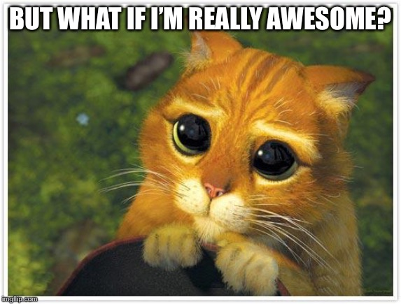 Shrek Cat Meme | BUT WHAT IF I'M REALLY AWESOME? | image tagged in memes,shrek cat | made w/ Imgflip meme maker