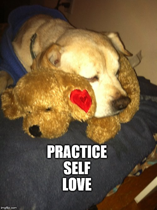Self-Love |  PRACTICE SELF LOVE | image tagged in inspirational,encouragement,dogs,love,self love,self help | made w/ Imgflip meme maker