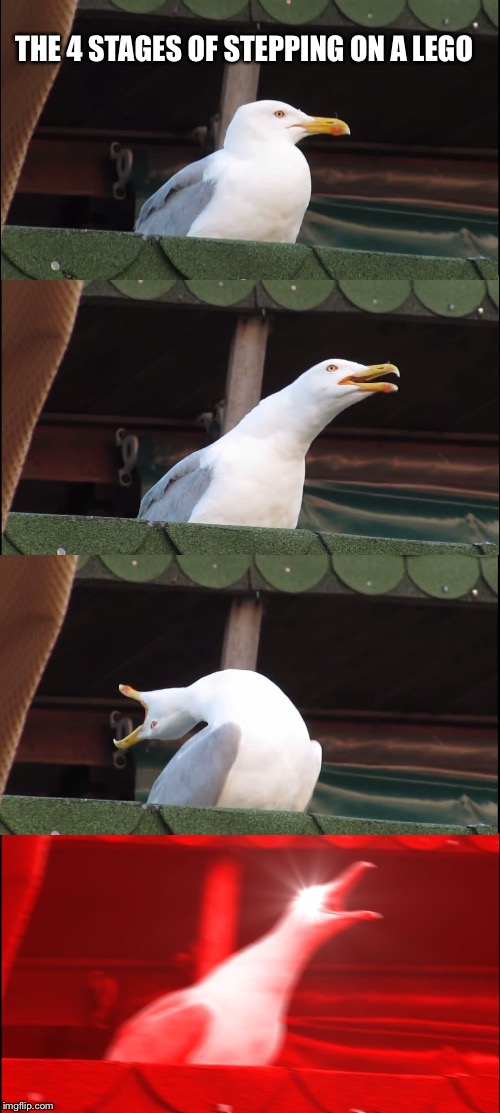 Inhaling Seagull Meme | THE 4 STAGES OF STEPPING ON A LEGO | image tagged in memes,inhaling seagull | made w/ Imgflip meme maker