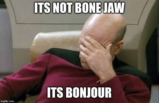 Captain Picard Facepalm | ITS NOT BONE JAW ITS BONJOUR | image tagged in memes,captain picard facepalm | made w/ Imgflip meme maker
