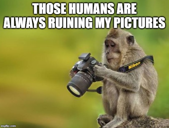 THOSE HUMANS ARE ALWAYS RUINING MY PICTURES | made w/ Imgflip meme maker