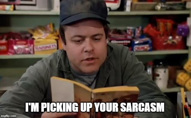 picking up your sarcasm | I'M PICKING UP YOUR SARCASM | image tagged in fun,sarcasm | made w/ Imgflip meme maker