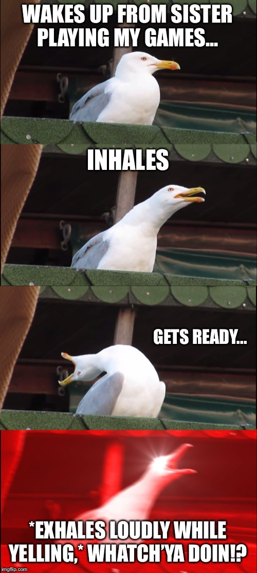 Inhaling Seagull Meme | WAKES UP FROM SISTER PLAYING MY GAMES... INHALES GETS READY... *EXHALES LOUDLY WHILE YELLING,* WHATCH'YA DOIN!? | image tagged in memes,inhaling seagull | made w/ Imgflip meme maker