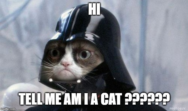 Grumpy Cat Star Wars Meme | HI TELL ME AM I A CAT ?????? | image tagged in memes,grumpy cat star wars,grumpy cat | made w/ Imgflip meme maker