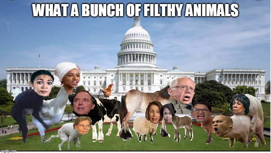 WHAT A BUNCH OF FILTHY ANIMALS | image tagged in what a bunch of animals | made w/ Imgflip meme maker