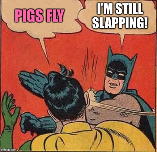 Batman Slapping Robin Meme | PIGS FLY I'M STILL SLAPPING! | image tagged in memes,batman slapping robin | made w/ Imgflip meme maker