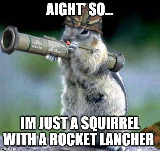 Bazooka Squirrel | AIGHT' SO... IM JUST A SQUIRREL WITH A ROCKET LANCHER | image tagged in memes,bazooka squirrel | made w/ Imgflip meme maker