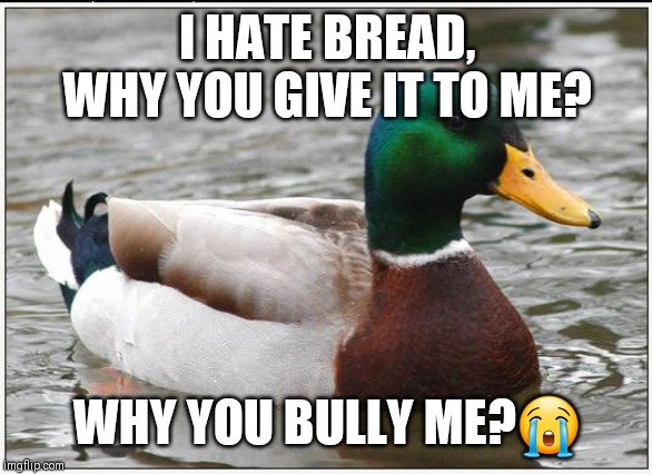 Actual Advice Mallard | I HATE BREAD, WHY YOU GIVE IT TO ME? WHY YOU BULLY ME?? | image tagged in memes,actual advice mallard | made w/ Imgflip meme maker