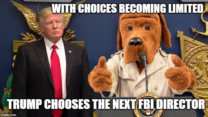 Mcgruff | WITH CHOICES BECOMING LIMITED TRUMP CHOOSES THE NEXT FBI DIRECTOR | image tagged in politics | made w/ Imgflip meme maker