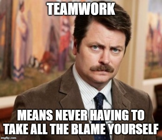 Ron Swanson | TEAMWORK MEANS NEVER HAVING TO TAKE ALL THE BLAME YOURSELF | image tagged in memes,ron swanson | made w/ Imgflip meme maker