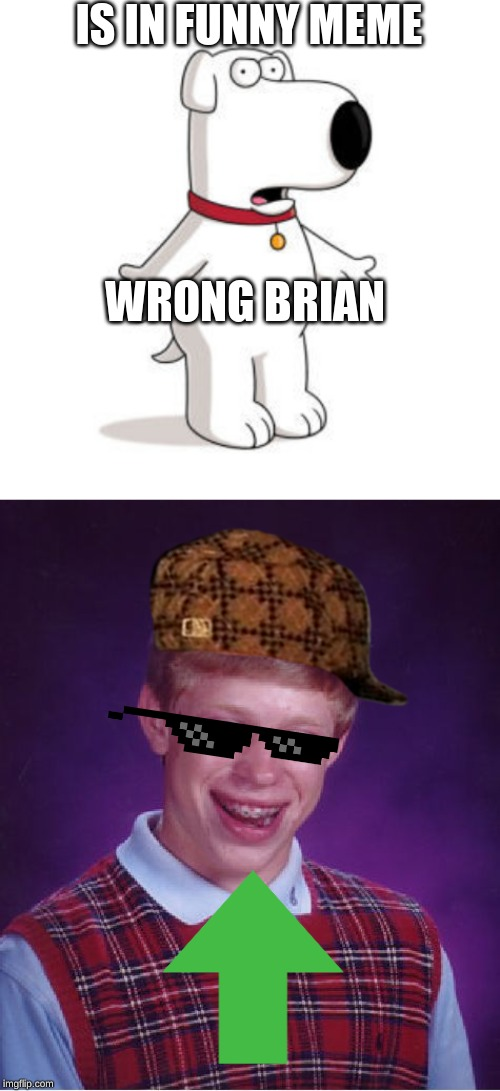 IS IN FUNNY MEME; WRONG BRIAN | image tagged in memes,bad luck brian,family guy brian | made w/ Imgflip meme maker