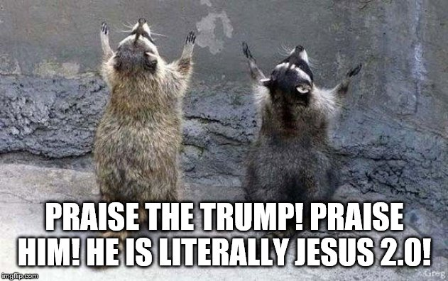 Raccoon Worshipping | PRAISE THE TRUMP! PRAISE HIM! HE IS LITERALLY JESUS 2.0! | image tagged in raccoon worshipping | made w/ Imgflip meme maker