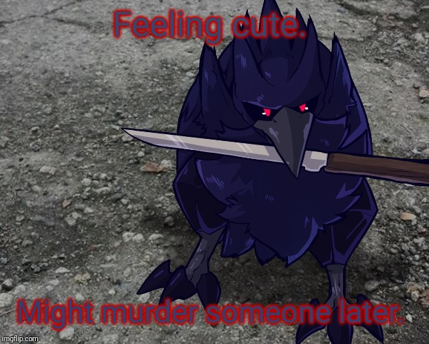 I'm no cute. So... DON'T EVEN CALL ME CUTE! (Damn my anger issues...) |  Feeling cute. Might murder someone later. | image tagged in corviknight with a knife,feeling cute | made w/ Imgflip meme maker