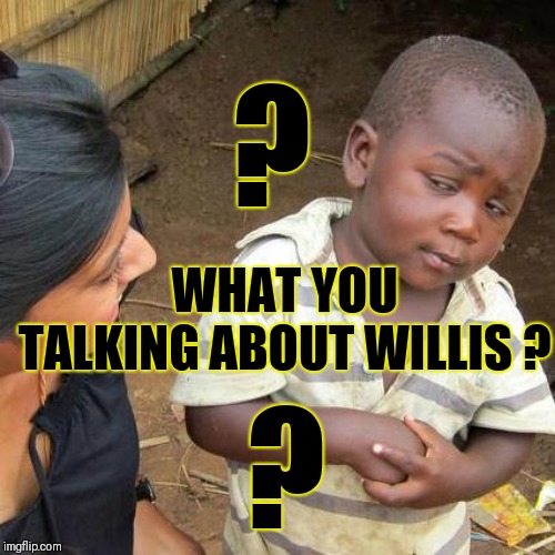 What you talking about Willis? |  ? WHAT YOU TALKING ABOUT WILLIS ? ? | image tagged in memes,third world skeptical kid,gary,waiting skeleton,inspirational quote | made w/ Imgflip meme maker
