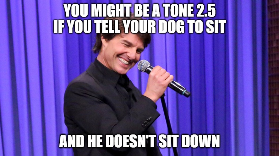 YOU MIGHT BE A TONE 2.5 IF YOU TELL YOUR DOG TO SIT; AND HE DOESN'T SIT DOWN | image tagged in ot8 | made w/ Imgflip meme maker