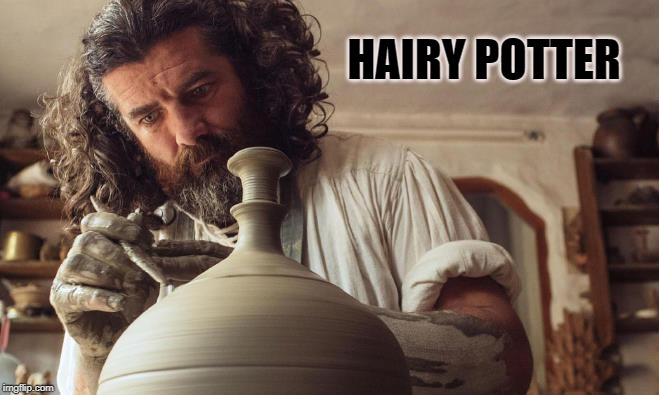 hairy potter | HAIRY POTTER | image tagged in hairy,potter,joke | made w/ Imgflip meme maker