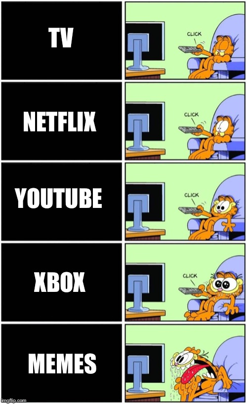 TV MEMES NETFLIX XBOX YOUTUBE | image tagged in garfield,memes,my life | made w/ Imgflip meme maker
