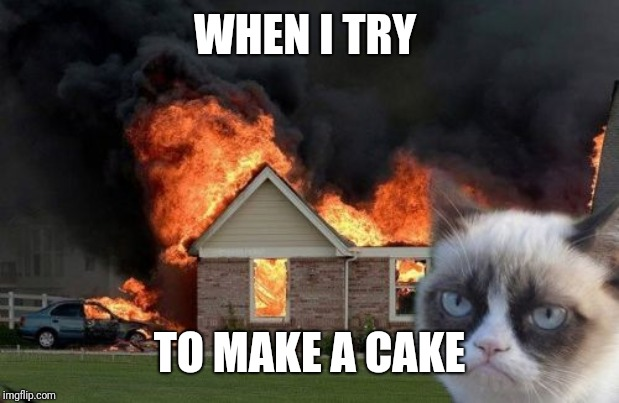 Burn Kitty | WHEN I TRY TO MAKE A CAKE | image tagged in memes,burn kitty,grumpy cat | made w/ Imgflip meme maker
