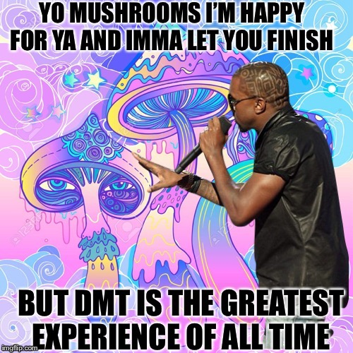 image tagged in shrooms,dmt,psychedelic,kanye west | made w/ Imgflip meme maker