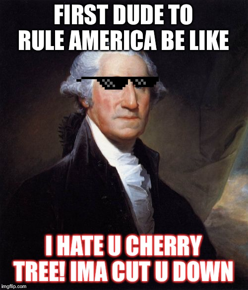 George Washington | FIRST DUDE TO RULE AMERICA BE LIKE I HATE U CHERRY TREE! IMA CUT U DOWN | image tagged in memes,george washington | made w/ Imgflip meme maker