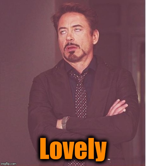 Face You Make Robert Downey Jr Meme | Lovely | image tagged in memes,face you make robert downey jr | made w/ Imgflip meme maker