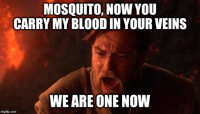 You Were The Chosen One (Star Wars) Meme | MOSQUITO, NOW YOU CARRY MY BLOOD IN YOUR VEINS WE ARE ONE NOW | image tagged in memes,you were the chosen one star wars | made w/ Imgflip meme maker